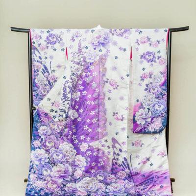 30.白紫 蝶牡丹
