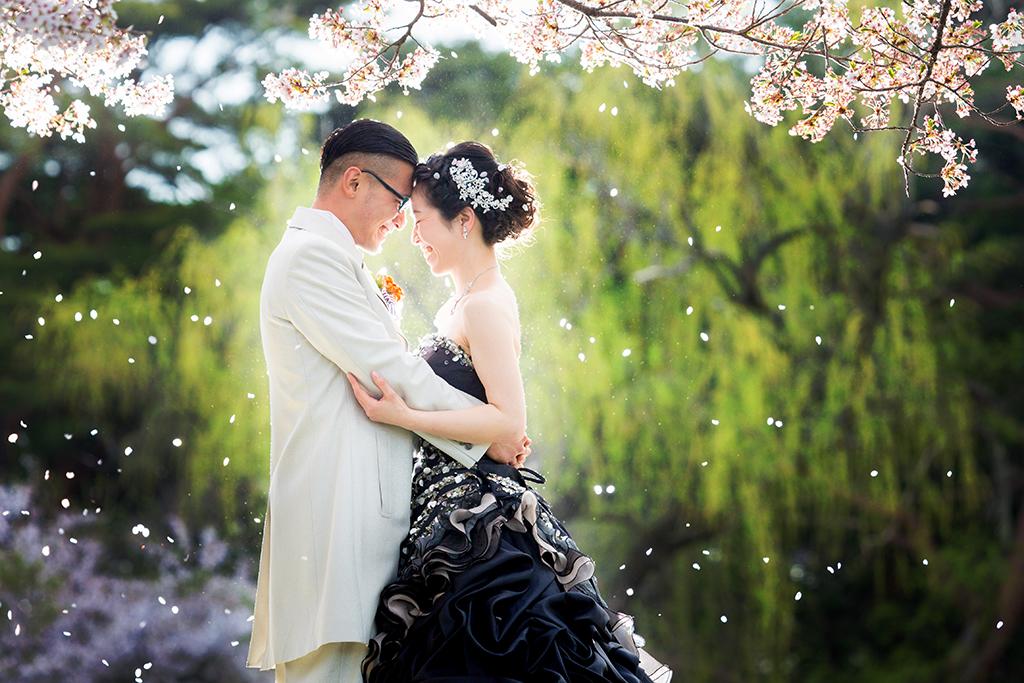 祝・結婚 桜ロケ予約始まってます